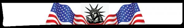 Liberty Wind Skirts Graphics